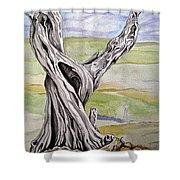 Sentinel Tree Shower Curtain