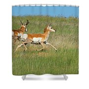 Separate Ways Shower Curtain