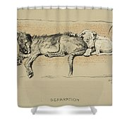 Separation, 1930, 1st Edition Shower Curtain
