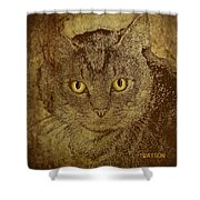 Sepia Cat Shower Curtain