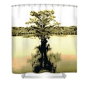 Sepia Cypress Chicot Sp Louisiana Shower Curtain