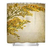 Sepia Gold Shower Curtain