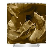 Sepia Rose Close Up Shower Curtain