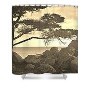 Sepia Seaview Shower Curtain