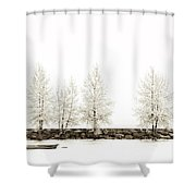 Sepia Tree Shower Curtain