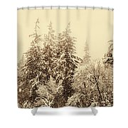 Sepia Winter Landscape Shower Curtain