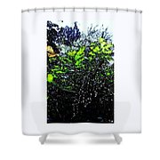 September Shower Curtain