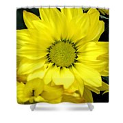 September Yellow Shower Curtain