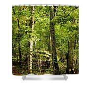 September's Woodlands Shower Curtain