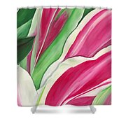 Serendipity Shower Curtain by Lisa Bentley