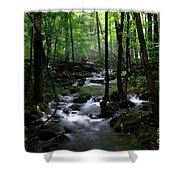 Serene Greenbrier Area Stream  Shower Curtain