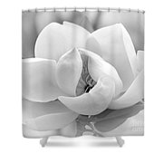 Serene Magnolia Shower Curtain