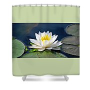 Serenity On The Lily Pond Shower Curtain
