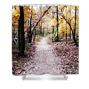 Serenity Walk In The Woods Shower Curtain