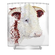 Sergeant Major Is A Hereford Bull Shower Curtain