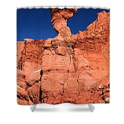 Serpent On The Cliff Shower Curtain
