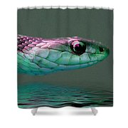 Serpent Profile 2 Shower Curtain