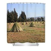 Sesame Harvest Shower Curtain