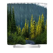 Set Down Your Coffee And Follow Me - 140702a-098 Shower Curtain