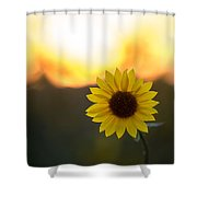 Setting Sun Flower Shower Curtain