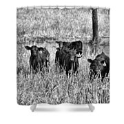 Eight Babies Shower Curtain