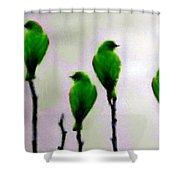 Seven Birds Of Green Shower Curtain