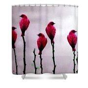 Seven Birds Of Red Shower Curtain