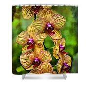 Seven Blooms Shower Curtain