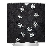 Seventeen Flies Flying - Oil Painting Shower Curtain