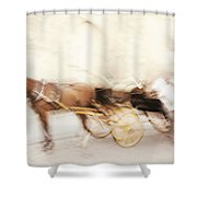 Seville Impression Shower Curtain