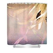 Shabby Chic Ballet I Shower Curtain