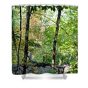 Shade Upon A Rock Shower Curtain