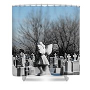 Shades Of A Gothic Winter Shower Curtain