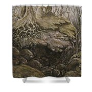 Shades Of Froud Shower Curtain