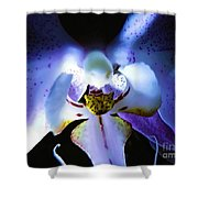 Shadow Dance Shower Curtain