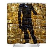 Shadow Of Michaelangelo's David Shower Curtain