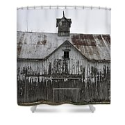 Shadow Of The Dog Shower Curtain