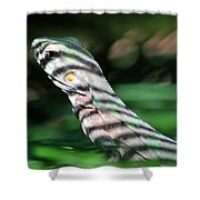 Shadow Stripes Shower Curtain