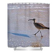 Shadow Walker Shower Curtain