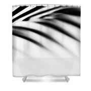 Shadow Zen. Palm Leaf. Monochrome Shower Curtain by Jenny Rainbow