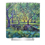 Shadows At Noon - Indian Landscapes Shower Curtain