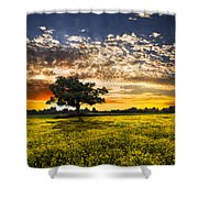Shadows At Sunset Shower Curtain