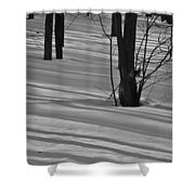 Shadows In Boyertown Park Shower Curtain