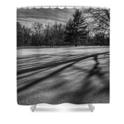 Shadows In The Park Shower Curtain