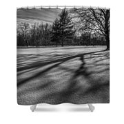 Shadows In The Park Square Shower Curtain