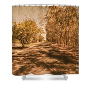 Shadows On Autumn Lane Shower Curtain