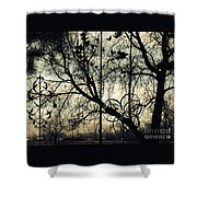 Shadow's Playground Shower Curtain