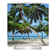 Shady Palms Shower Curtain