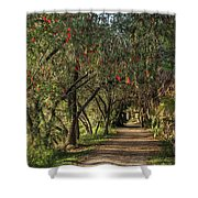 Shady Path Shower Curtain