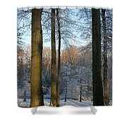 Light And Shadows In Wintertime Shower Curtain